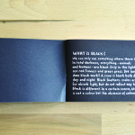the little book of black animals