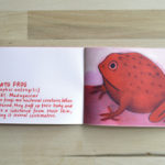 the little book of red animals